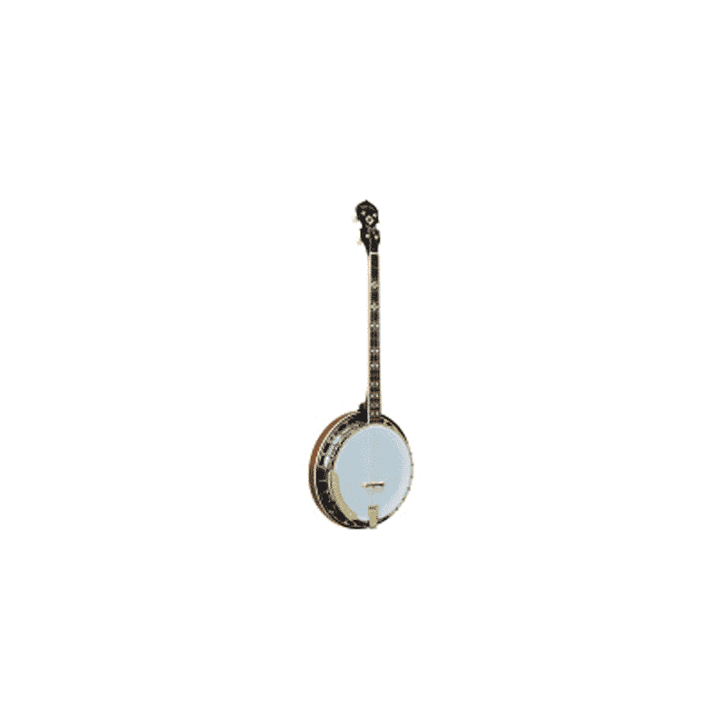 4-string-Plectrum-Special-banjo