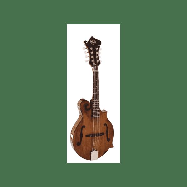 Barnes-&-Mullins-Mandolin---Salvino-Model