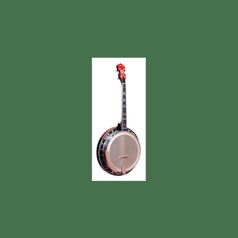 Irish-tenor-banjo-with-flange,-case-included