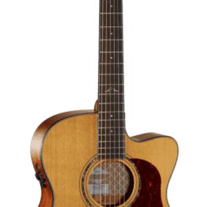 Cort Gold OC6 Guitar.